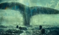 Giants of the Sea Aren't as Big as You'd Think (Video)