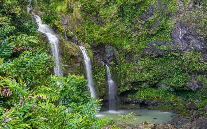 Road to Hana in Maui, Hawaii via Shutterstock*