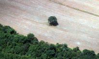 Amazon Tribe Attacks Oilfield in Ecuador