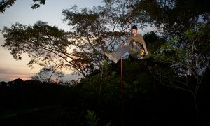 Tree Climbing as a Tool to Build Respect for Forests