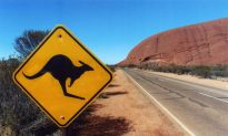 How to Make Your Australian Road Trip Awesome