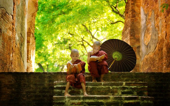 Young Buddhist monk reading outside monastery, Myanmar via Shutterstock*