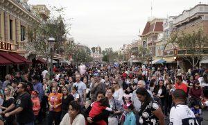 Viral Video Shows Brawl Inside Disneyland as Children Watch