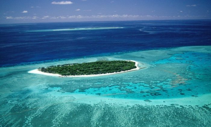 The Great Barrier Reef, one of the 7 Natural Wonders of the World is soon to be listed as World Heritage in Danger.