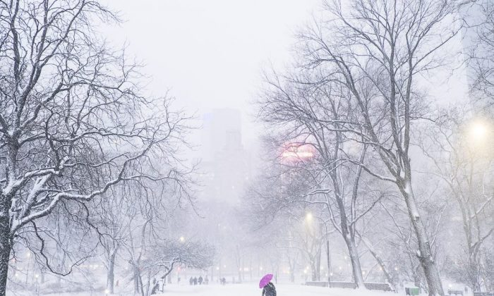 Central Park during the Juno blizzard in New York on Jan. 26, 2015. (Courtesy of Annie Zhuo/NTD Television)