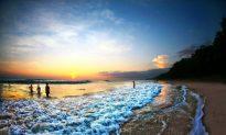 The Hidden Treasure of Costa Rica