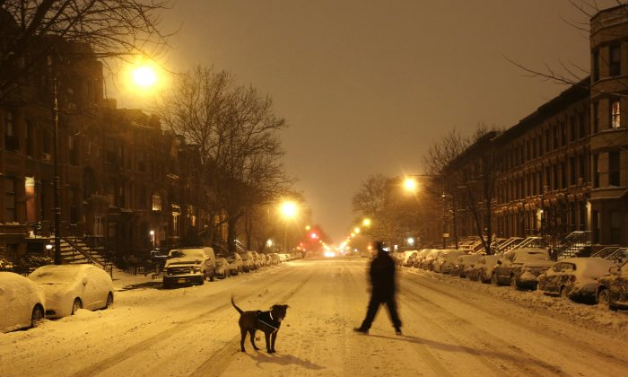 A man takes his dog for an early morning walk in the middle of an empty street in the Park Slope neighborhood in the Brooklyn borough of New York, Tuesday, Jan. 27, 2015. Tens of millions of people along the East Coast hunkered down for a storm that for most failed to live up to predictions that it would be one of the worst they'd ever seen. (AP Photo/Mark Lennihan)