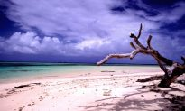 Best Time to Visit Marshall Islands