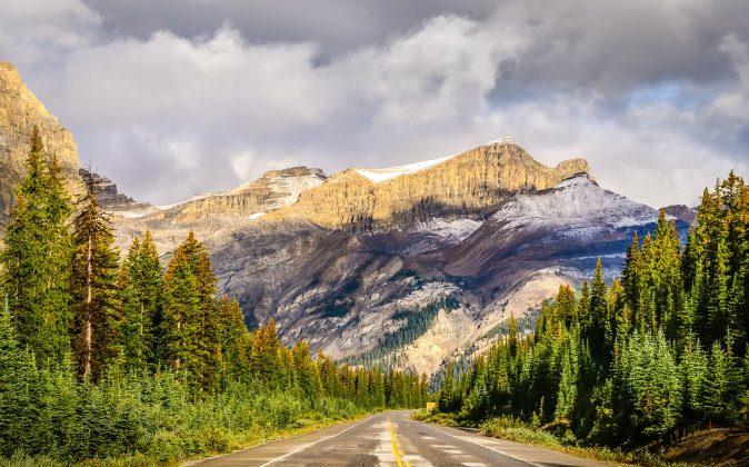 Icefields parkway, Canadian Rockies via Shutterstock*