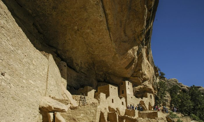 The Cliff Palace in Colorado's Mesa Verde National Park is the largest cliff dwelling in North America. Mesa Verde was home to the Anasazi, or Ancestral Pueblo people from 600 to 1300 A.D. The Cliff Palace had 150 rooms and a population of approximately 100 people. (Carole Jobin)