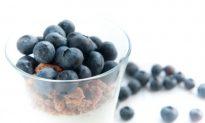 Blueberries: Small Fruit Delivers Big Reward