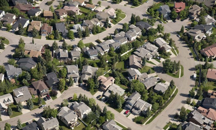 Aerial views of housing in Calgary. (The Canadian Press/Jonathan Hayward)