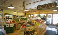 Lax Standards Allow GMOs in Organic Food