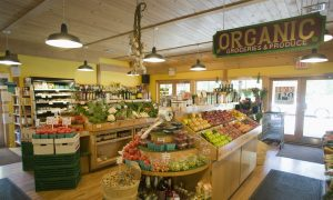 Lax Standards Allow GMOs in Organic Food