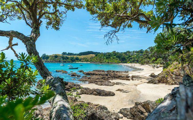 Palm Beach view, Waiheke Island - New Zealand via Shutterstock*