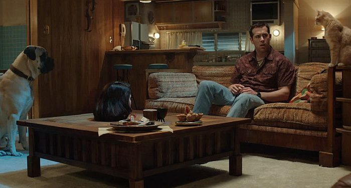 """Ryan Reynolds is Jerry, who's gone off his meds and hears his pets talking, in """"The Voices."""" (Lionsgate)"""