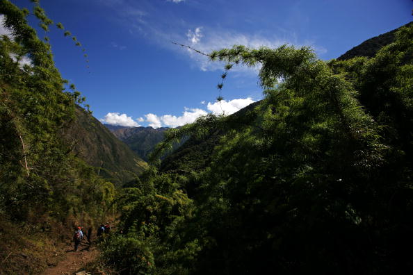 The trek winds its way down from the High Andes to the cloud forest, 'Ceja de Selva', the eyebrow of the jungle, Colpapampa, Peru, 28 June 2007.(photo by Brent Stirton/Getty Images.)