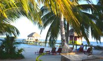 Where to Eat in Belize