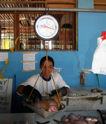 A woman sells fish in a market in Puerto Maldonado, in Peru's southeastern Madre de Dios region. Protected areas iin Amazonia encompass flooded forests that are crucial for fish reproduction. Photo credit: Barbara Fraser.
