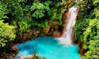 Top 5 Eco Adventures in Costa Rica