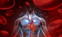 The Root Cause of Inflammation and Other Modern Diseases