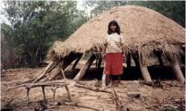 Deforestation Still a Threat to Communities in Paraguay