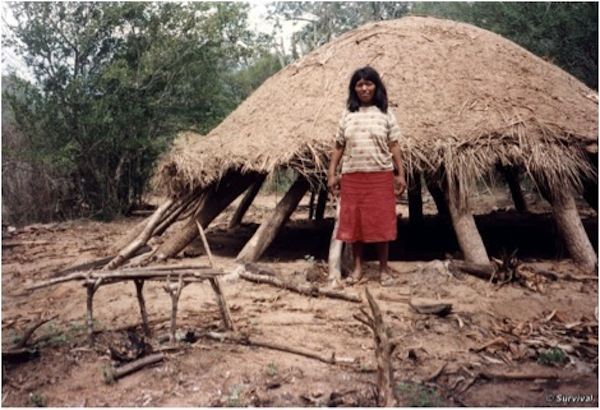 An Ayoreo woman in front of a traditional communal Ayoreo house that was abandoned because of bulldozing activity, according to Survival International. Photo courtesy of Survival International.