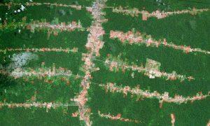 Drones to Scan the Amazon Rainforest for Hidden Civilizations