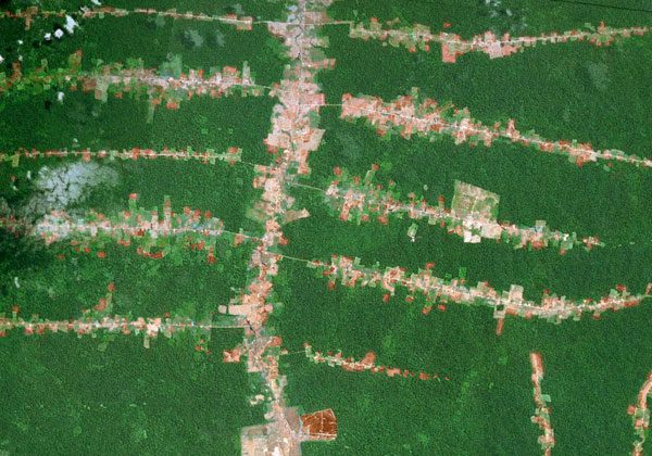 Modern day signs of human activity in the Amazon rainforest. Courtesy of NASA.