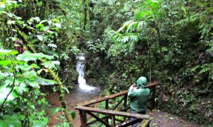 Hiking Santa Elena Reserve in a Misty Rain