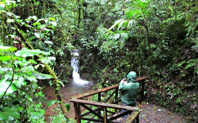 Enjoying the waterfall as if we had not seen enough falling water while hiking Santa Elena (Ted Nelson, Traveling Ted)