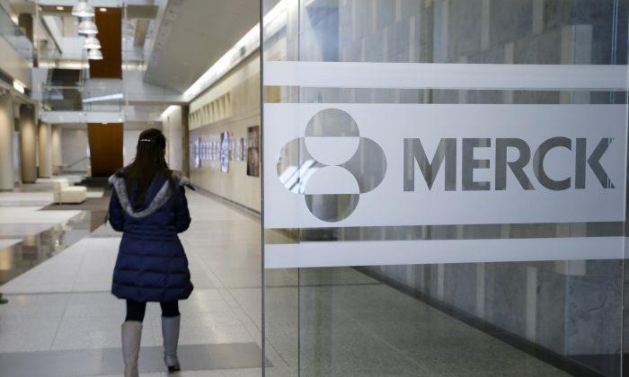 A person walks through a Merck & Co. building, in Kenilworth, N.J., on Dec. 18,  2014. (AP Photo/Mel Evans)