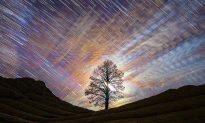 Tempestuous Beauty of Arizona Captured in Ethereal Time-Lapse Video