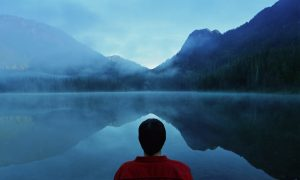 This Is Your Brain on Mindfulness Training