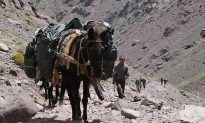 Trekking to Morocco's Highest Peak