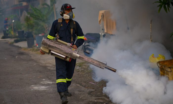 A municipal council worker dispenses insecticide using a fogging machine during a dengue-prevention spraying in Ampang, in the suburbs of Kuala Lumpur on Feb. 11, 2014. Dengue fever is spread by mosquitoes and causes joint pain, nausea, high fevers, and rashes; and in severe cases, it results in death. (Mohd Rasfan/AFP/Getty Images)