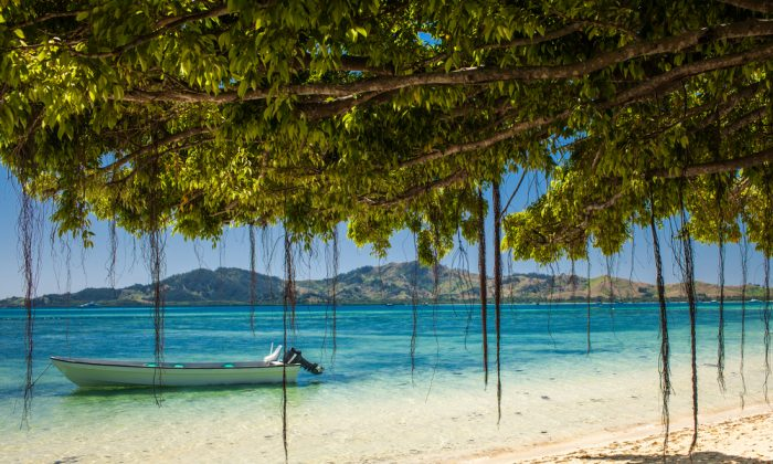 Boat and trees on a tropical beach in Fiji Islands. (Shutterstock*)