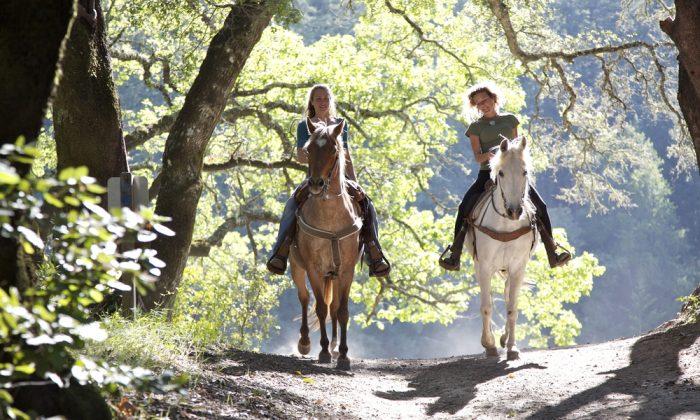 Horseback riders via Shutterstock*