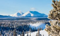 Top 10 Reasons to Winter in the Yukon… for Real!