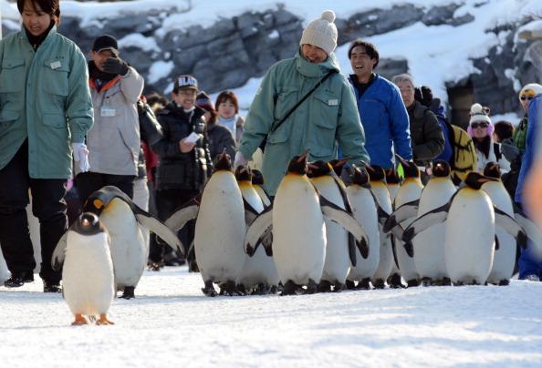 (TAKASHI NOGUCHI/AFP/Getty Images)