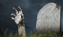 Rise of the 'Zombies'