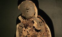 Case of the Rotting Mummies