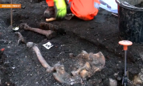 Hundreds of Skeletons Unearthed at London Construction Site (Video)