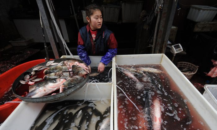A Chinese seafood seller at a market in Hefei, Anhui Province, on Dec. 23, 2010. A Chinese scientist has shed light on the abuses of antibiotics in China's aquaculture industry. (STR/AFP/Getty Images)