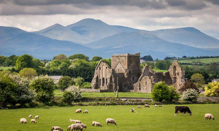 Idyllic Irish Landscape via Shutterstock*
