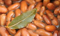 The Noble Bay Leaf
