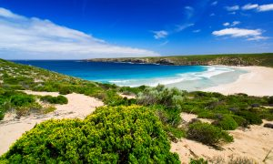 Top Reasons to Visit South Australia