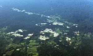 Peru Expanding Highways Into Rainforest Lands