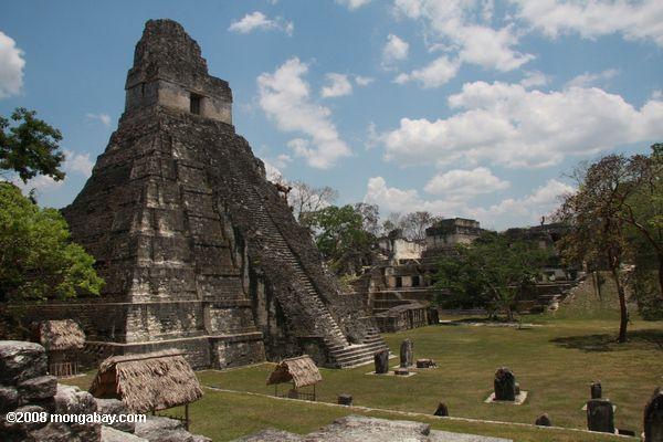 Temple at Tikal, a Mayan city in Guatemala. Photo by: Rhett A. Butler.