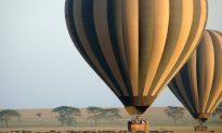 Soaring Over the Endless Serengeti Plain